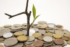 Empfehlung: Langsam als Unternehmer wachsen